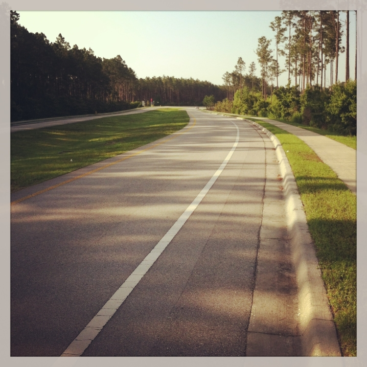 Here's a view of the types of roads I get to ride on here in FL.  Flat, wide, and usually not crowded.
